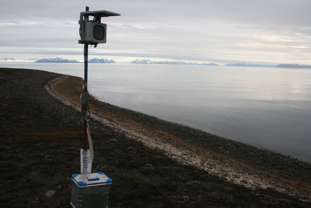 A time-lapse camera set up on an eroding cliff in Svalbard helped researchers see the mechanisms that were chewing away at the cliff and causing it to fall into the sea. Photo: Emilie Guegan