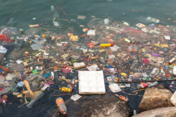 Approximately eight million tonnes of plastic trash is discarded annually in our oceans and lakes. It is estimated that more than 100,000 marine mammals and one million seabirds are killed each year as a result of this trash. Photo: Thinkstock