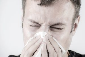 People with allergies living in southern Europe have yet another problem plant to live with— the dreaded ragweed. Photo: Thinkstock