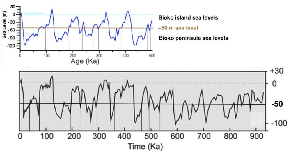Estimates of sea level variations in Pleistocene time. http://www.geo.arizona.edu/Antevs/ecol438/sealevl.gif http://gsabulletin.gsapubs.org/content/115/11/1324/F3.large.jpg