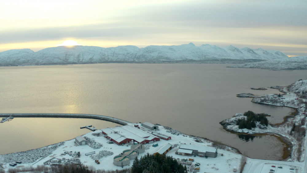 Fish farm on land in Norway